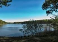 Beagle-Wanderung im Wermsdorfer Wald mit Kesselgulasch
